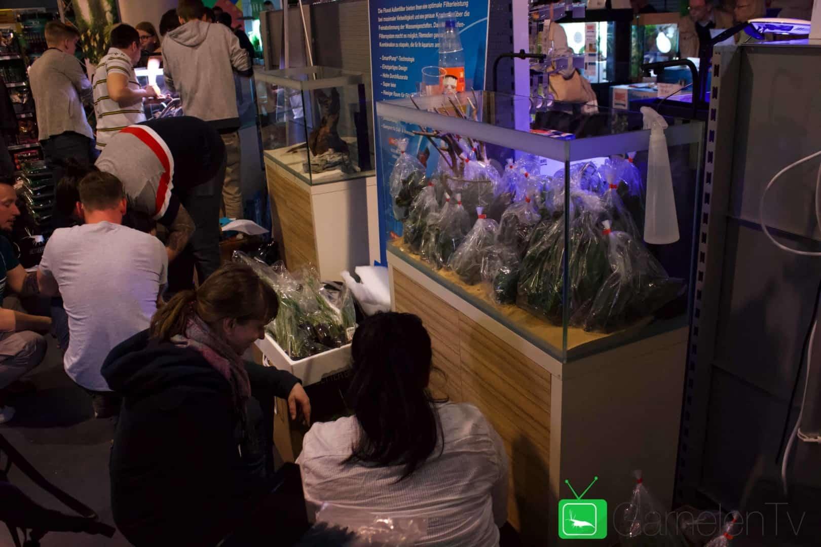 157 : Die Aquarium Design Meisterschule 70