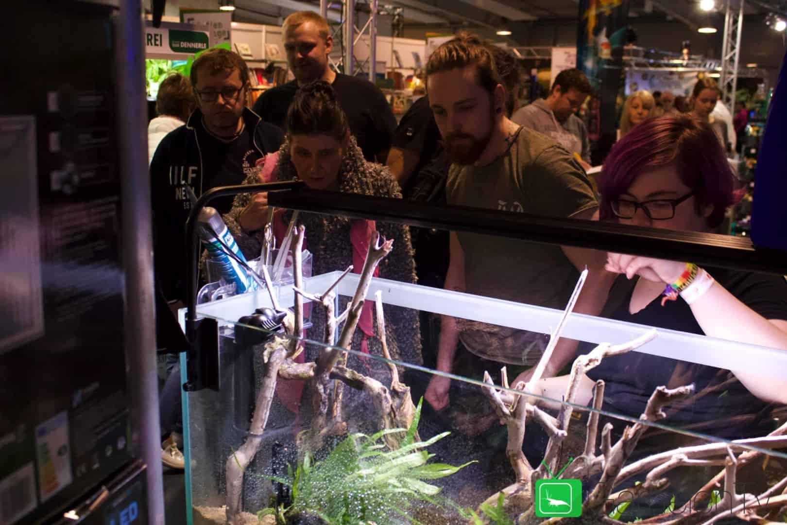 157 : Die Aquarium Design Meisterschule 71
