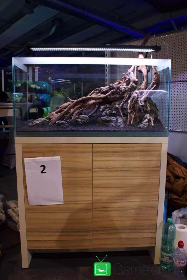 157 : Die Aquarium Design Meisterschule 73