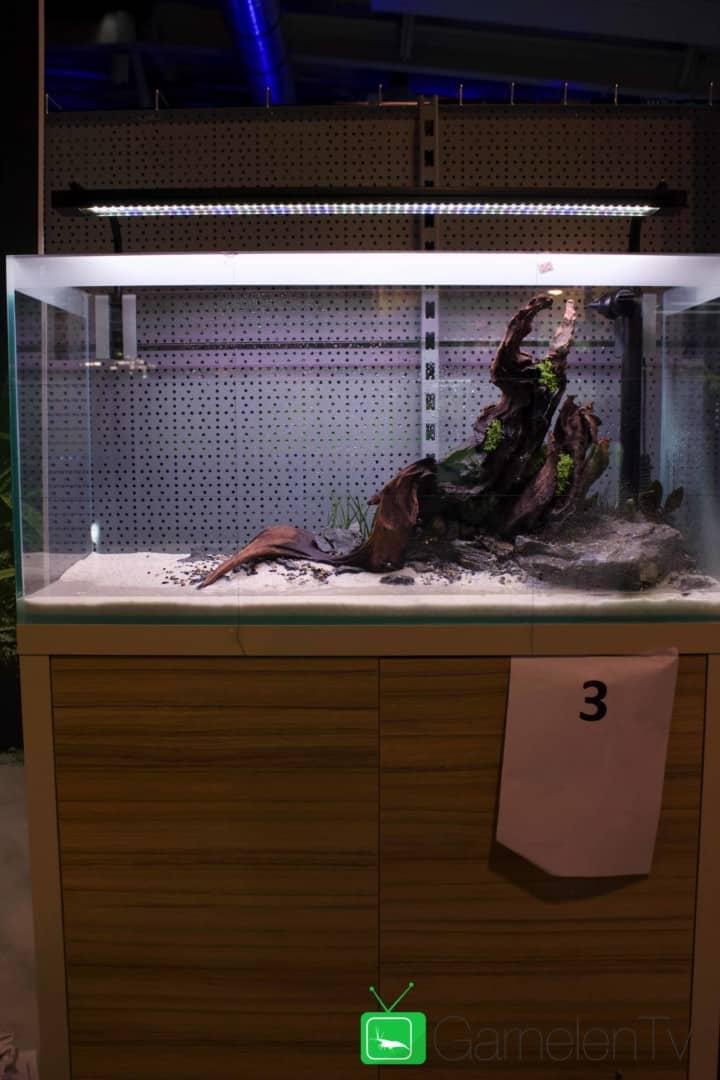 157 : Die Aquarium Design Meisterschule 76