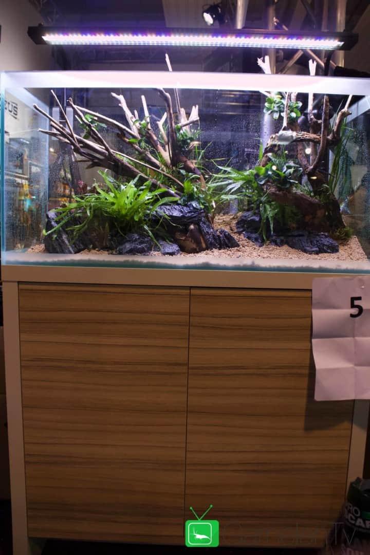 157 : Die Aquarium Design Meisterschule 78