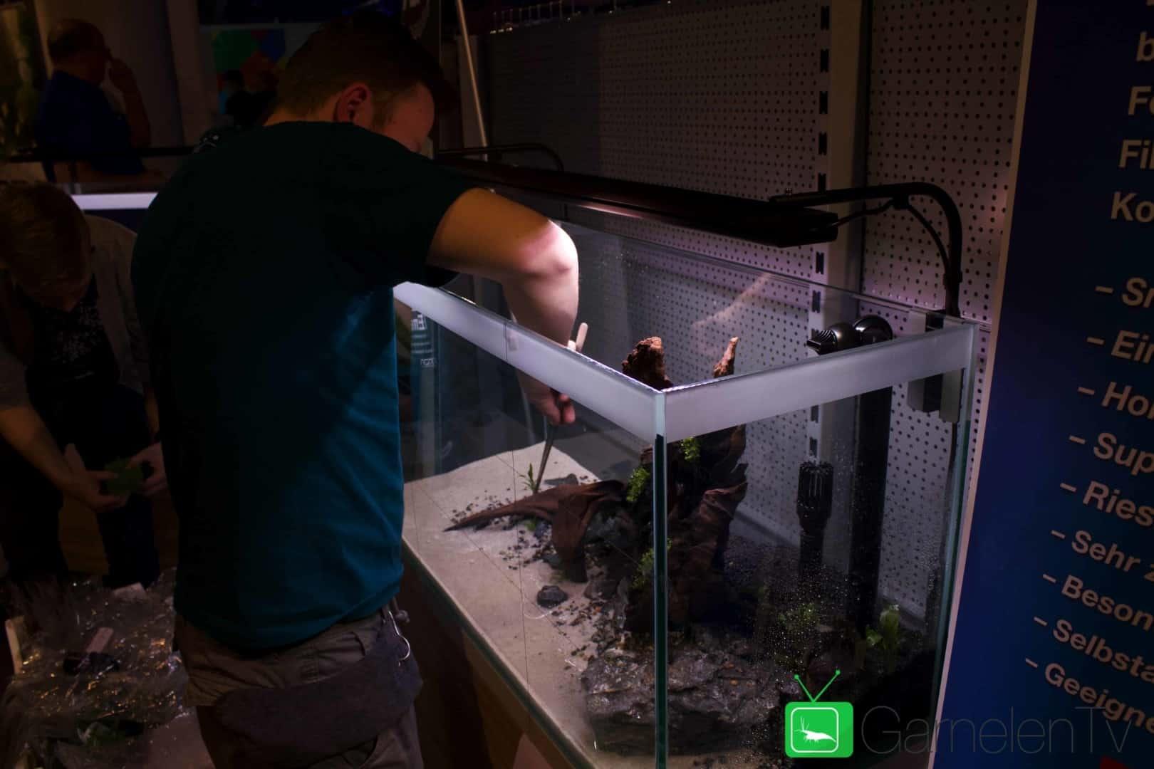 157 : Die Aquarium Design Meisterschule 83