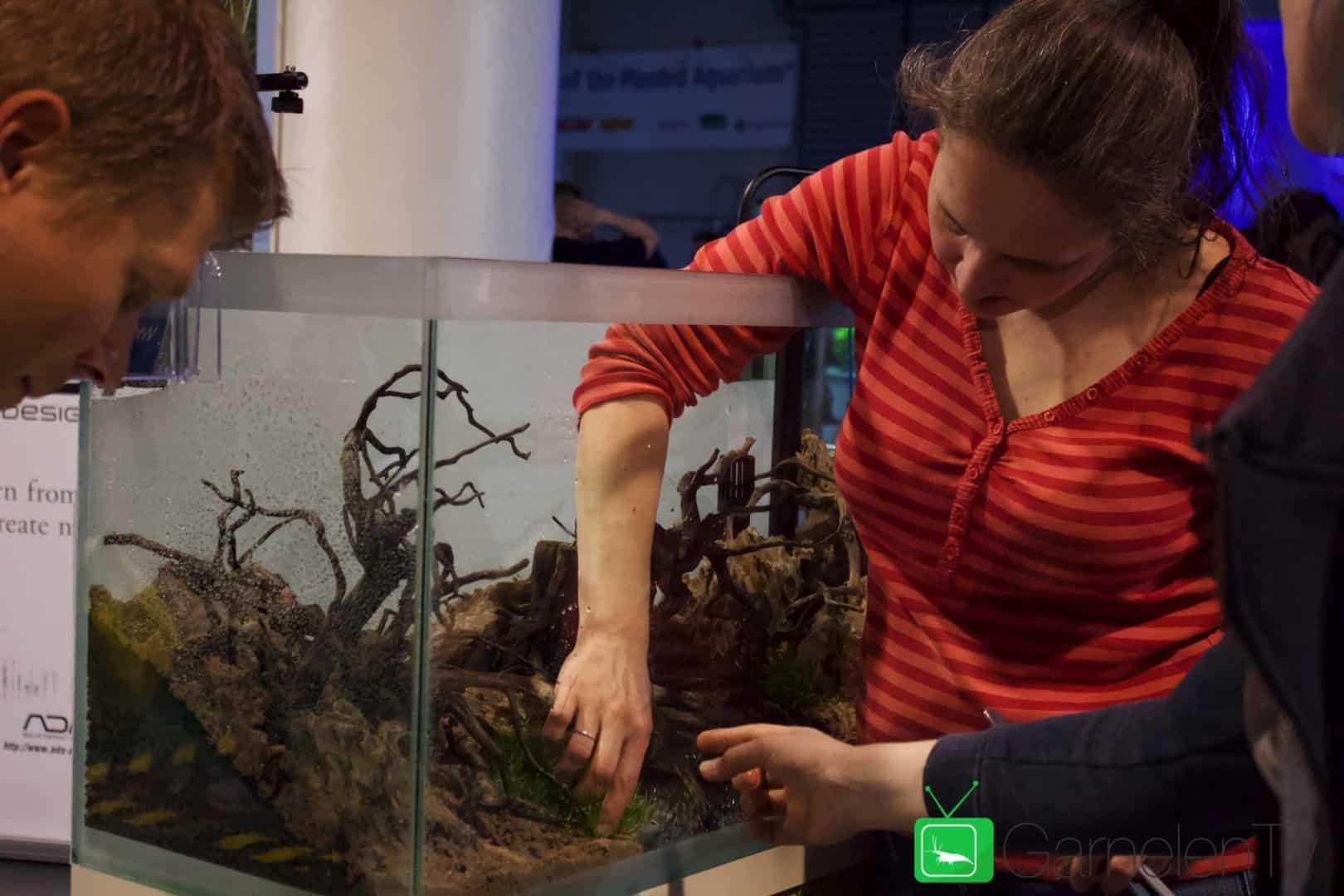 157 : Die Aquarium Design Meisterschule 86