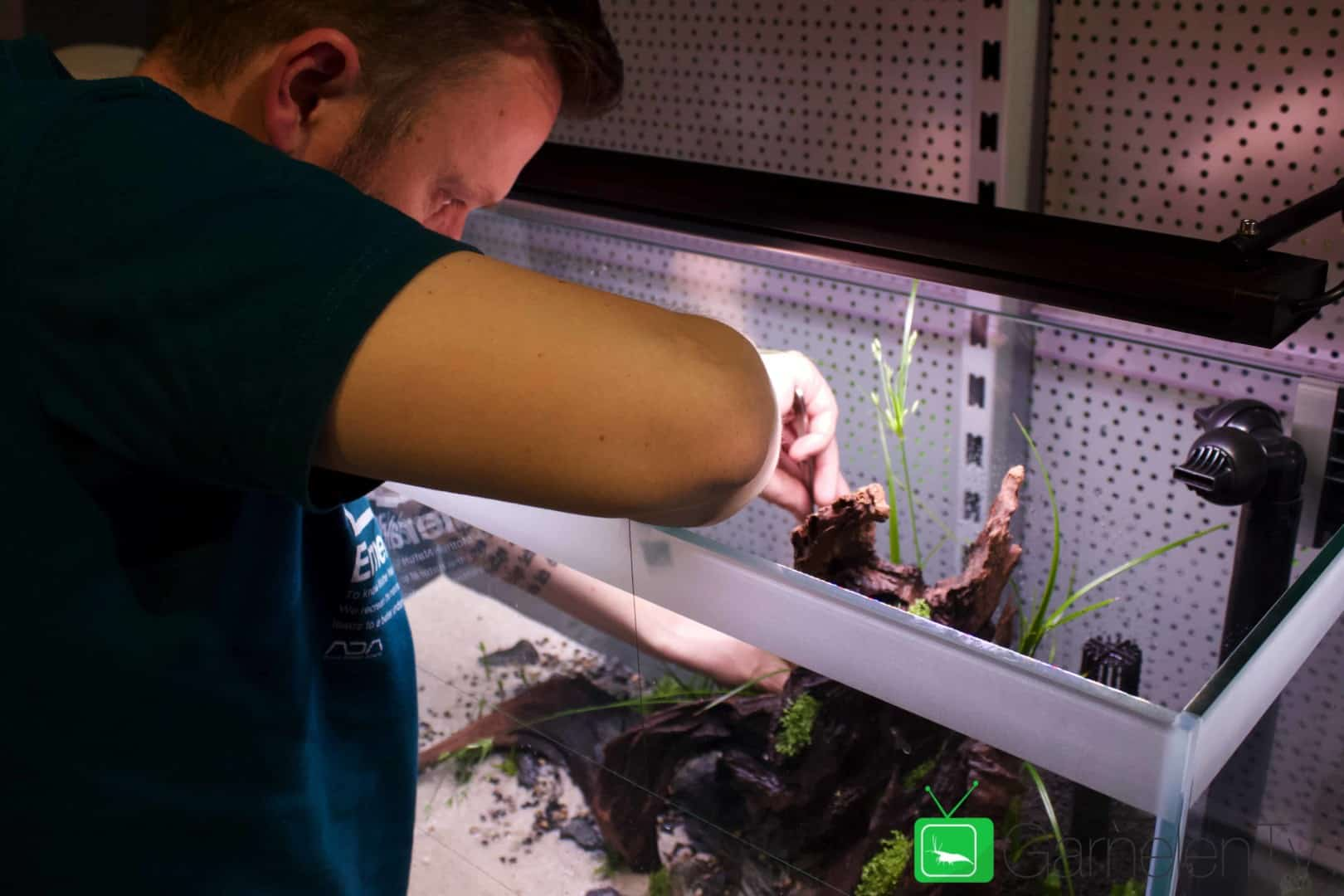 157 : Die Aquarium Design Meisterschule 90
