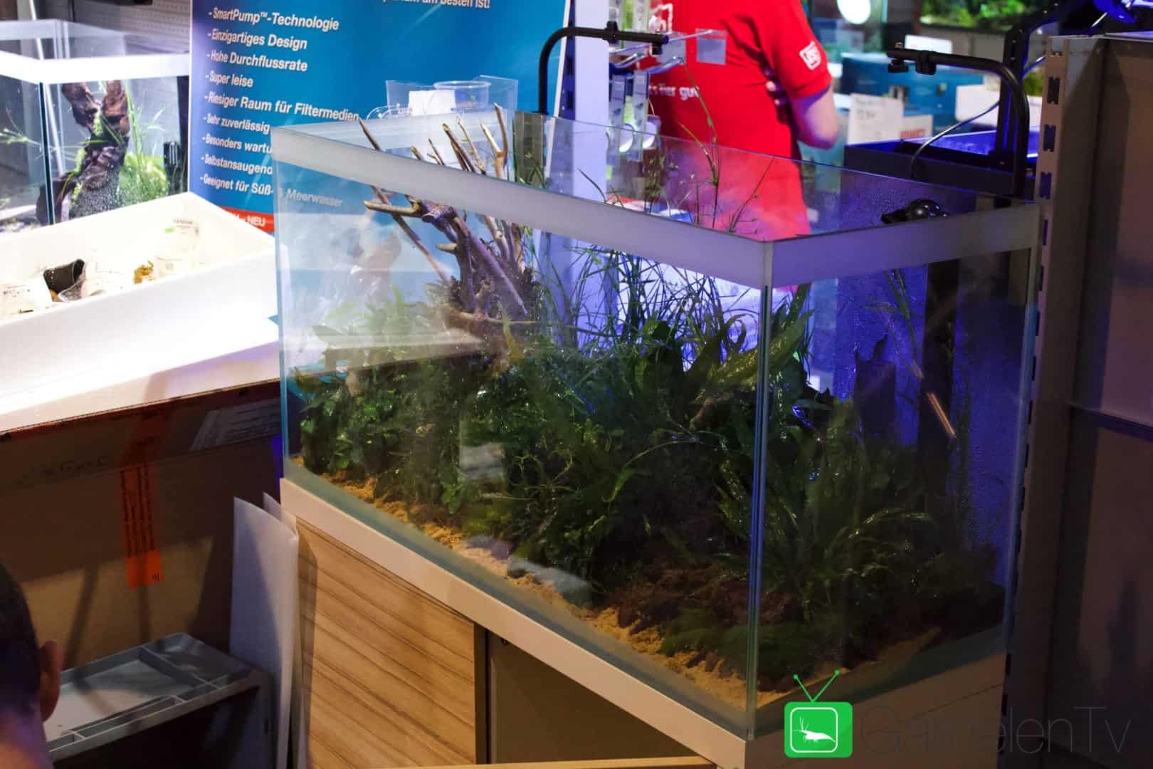 157 : Die Aquarium Design Meisterschule 98