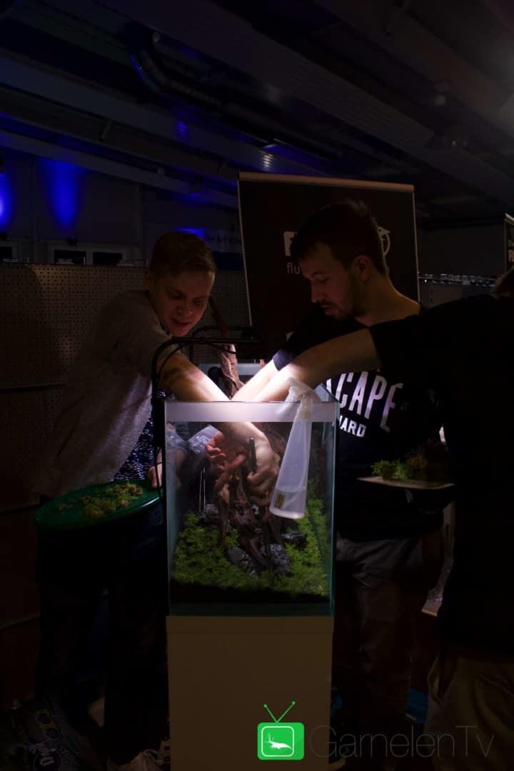 157 : Die Aquarium Design Meisterschule 100