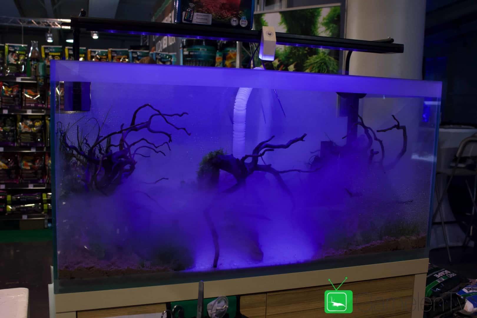 157 : Die Aquarium Design Meisterschule 102