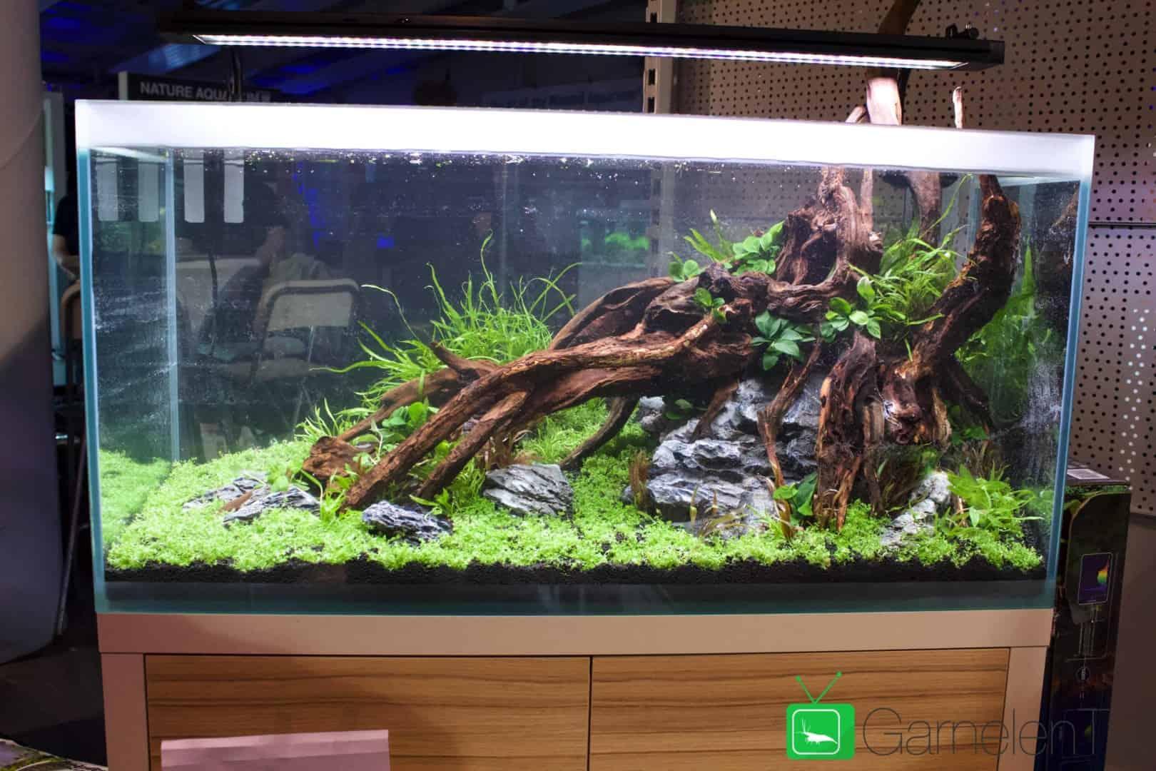 157 : Die Aquarium Design Meisterschule 108