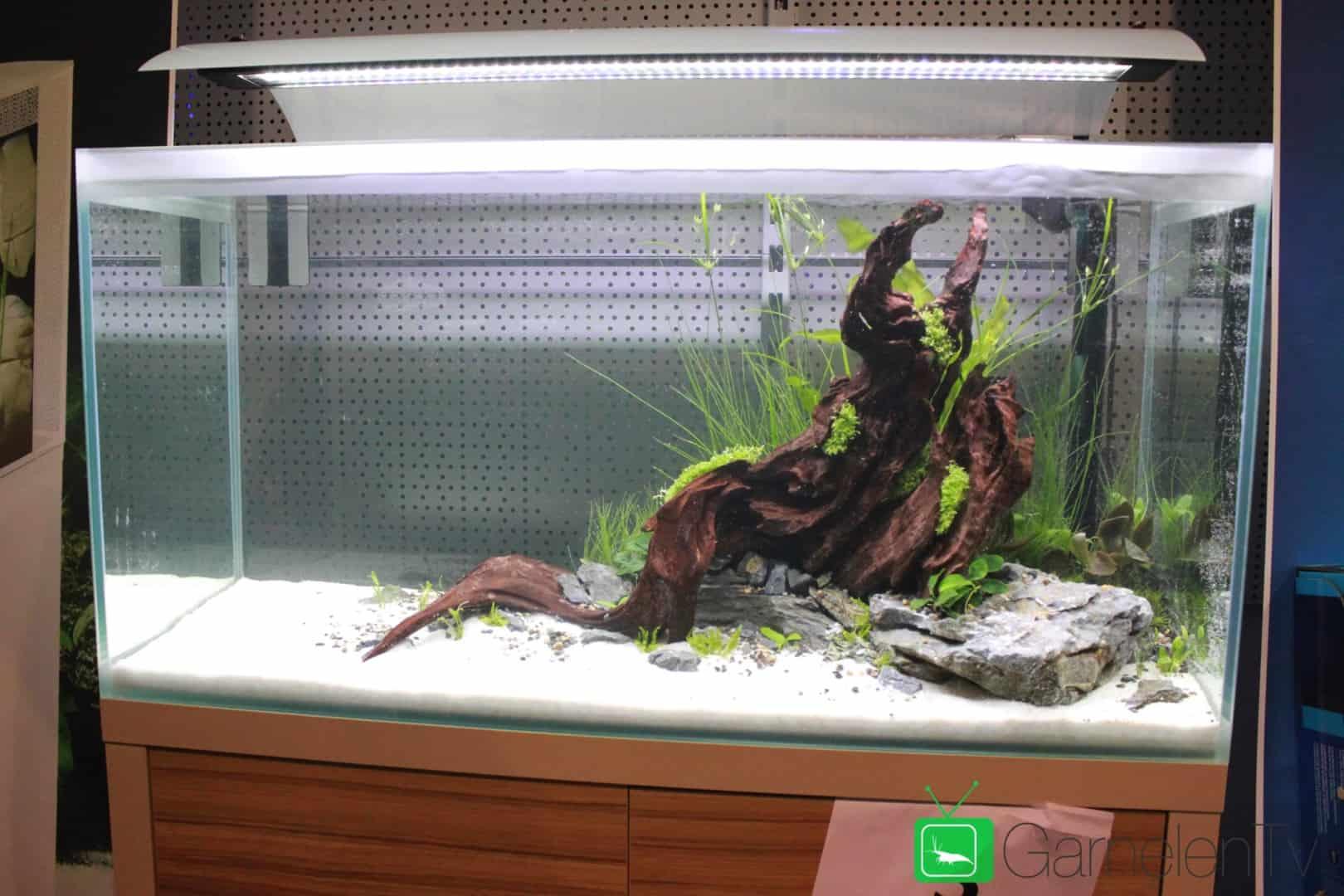 157 : Die Aquarium Design Meisterschule 109