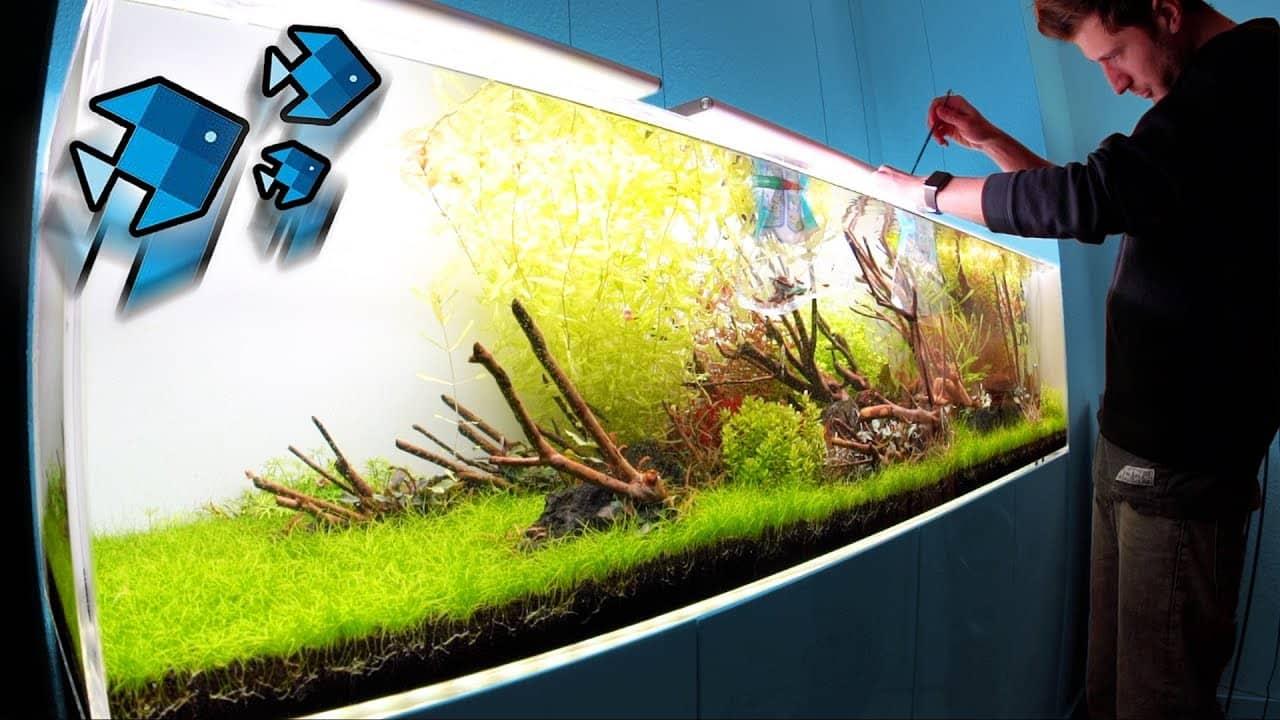 156 : Das XXL Aquarium und das UFO (izzi - Deutscher YouTube Star) 9
