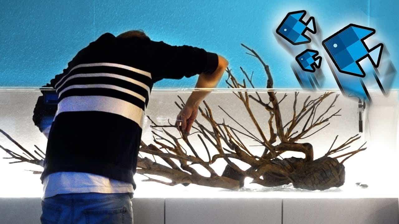 156 : Das XXL Aquarium und das UFO (izzi - Deutscher YouTube Star) 10