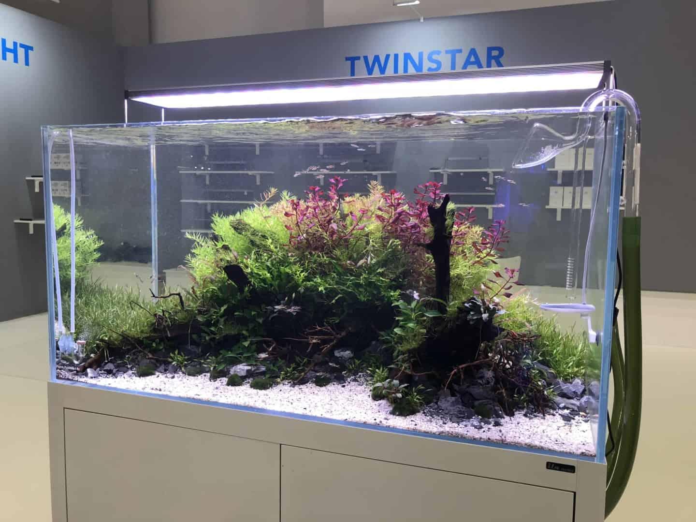 165 Aquaristik Trends auf der Interzoo (Matthias Wiesensee) 2