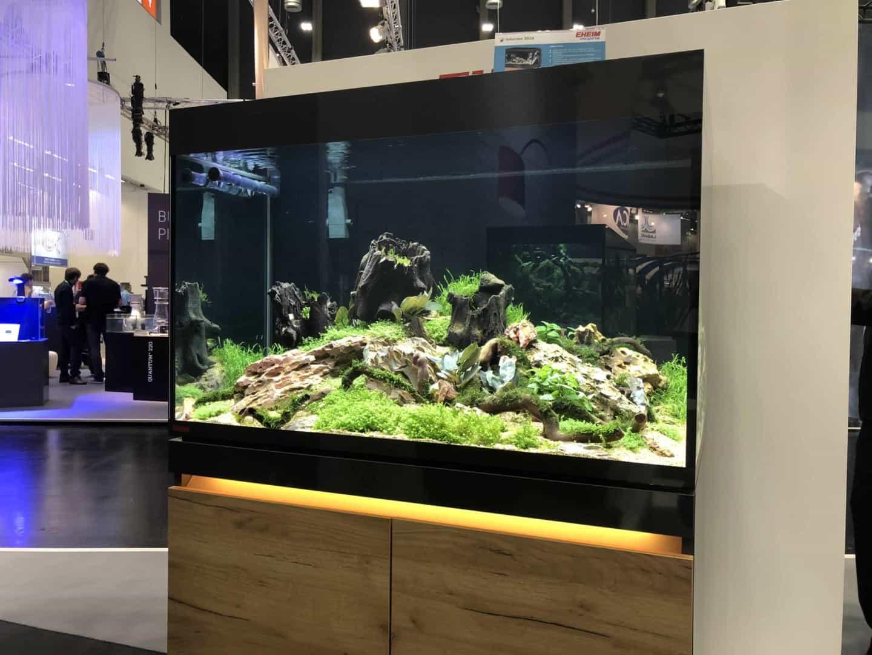 165 Aquaristik Trends auf der Interzoo (Matthias Wiesensee) 49
