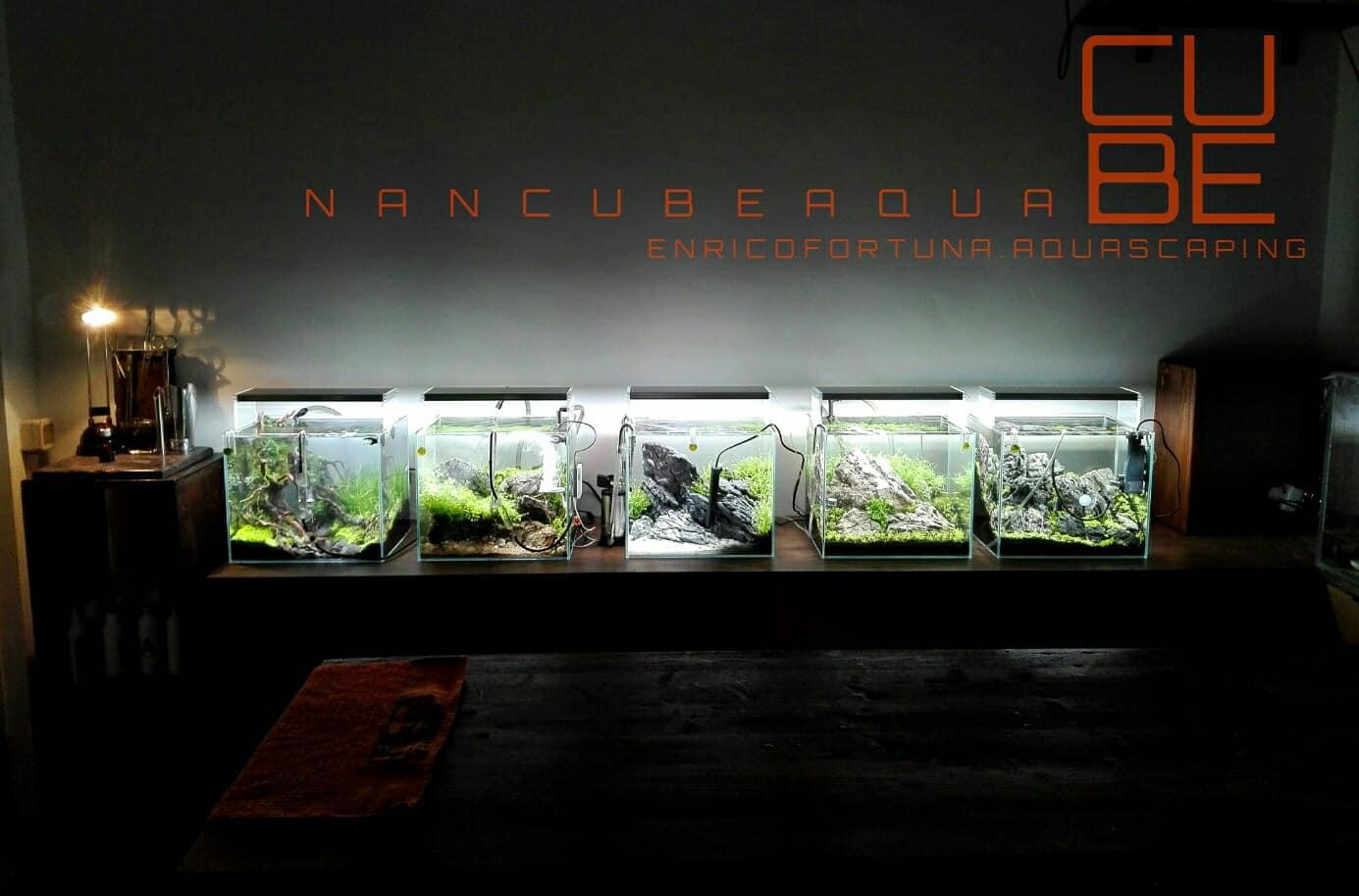 159 Die Interzoo 2018 - Das my-fish Special 2