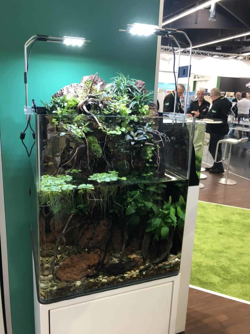 165 Aquaristik Trends auf der Interzoo (Matthias Wiesensee) 55