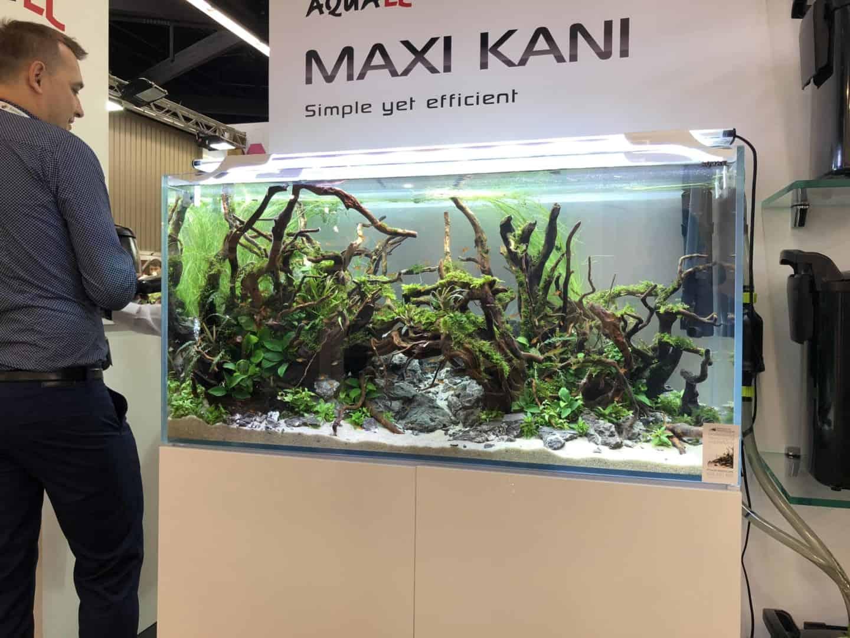 165 Aquaristik Trends auf der Interzoo (Matthias Wiesensee) 46