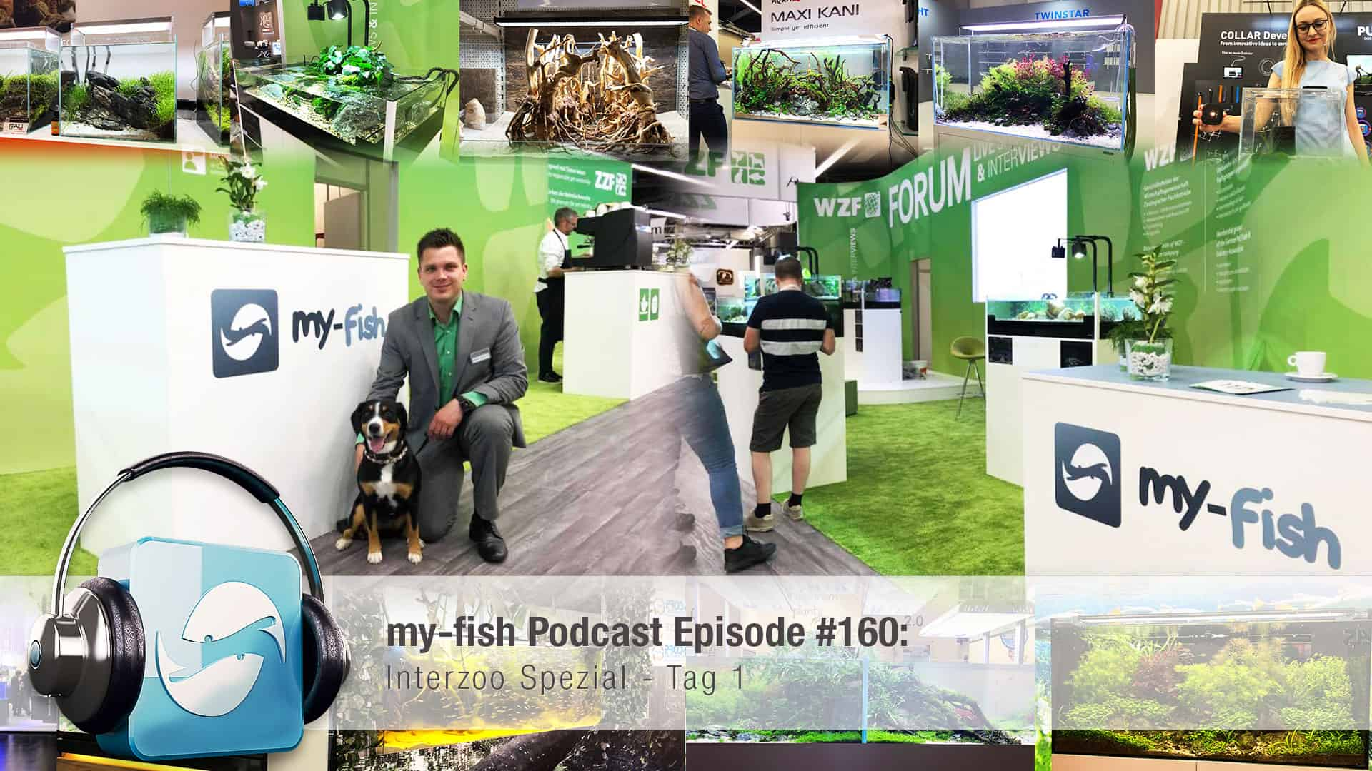 Podcast Episode #160: Die Interzoo 2018 - Das my-fish Special - Tag 1 1