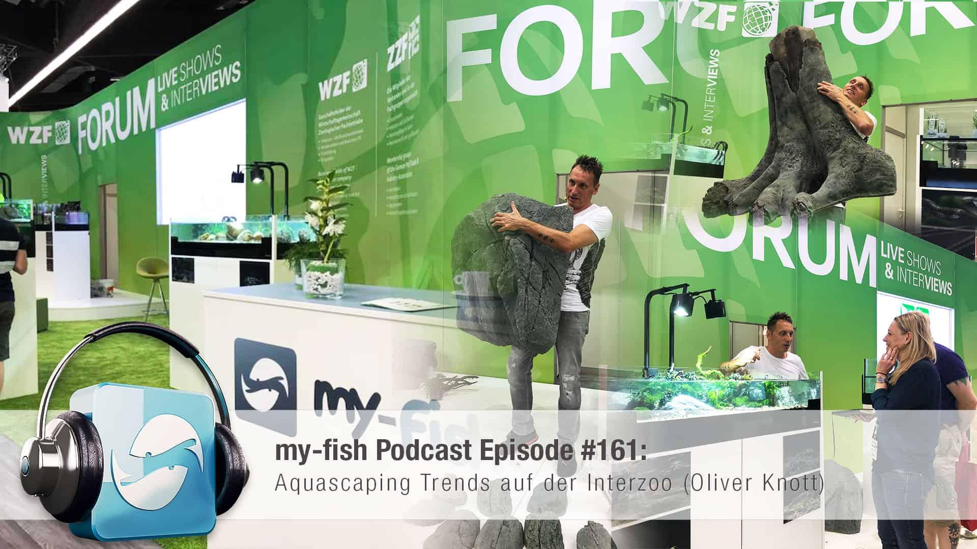 161 Aquascaping Trends auf der Interzoo (Oliver Knott) 1