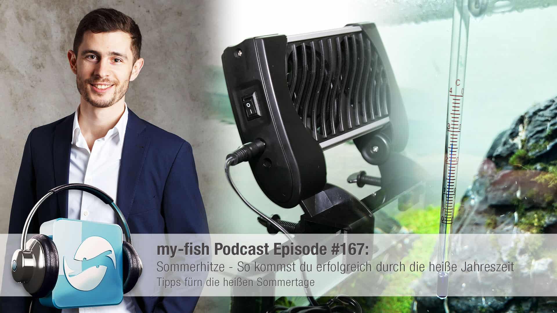 Podcast Episode #167: Sommerhitze - So kommst du erfolgreich durch die heiße Jahreszeit 1