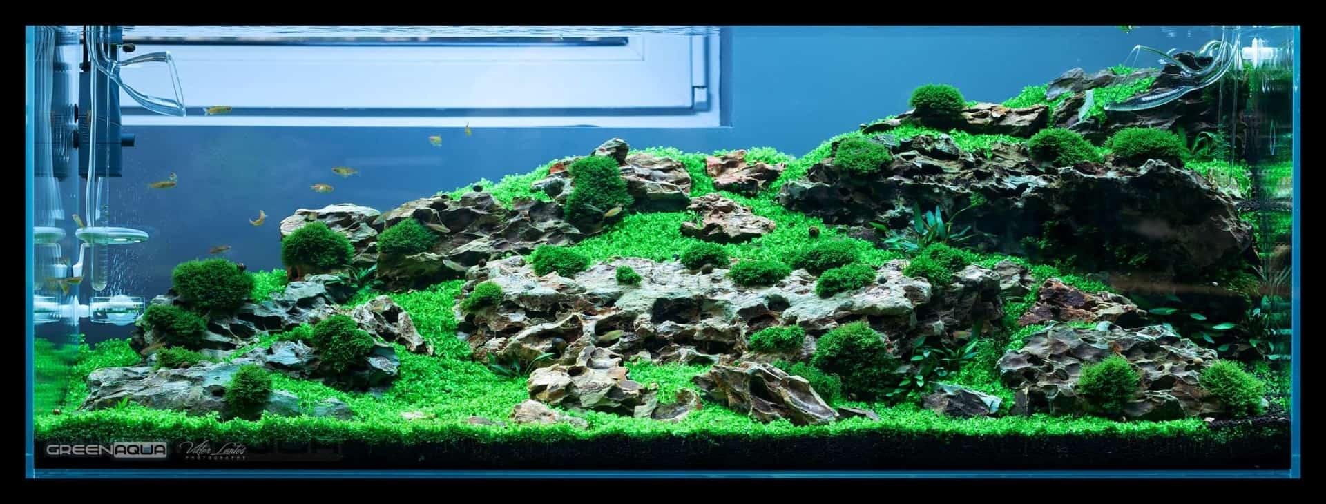174 Green Aqua 2.0 (Volker Jochum) 4