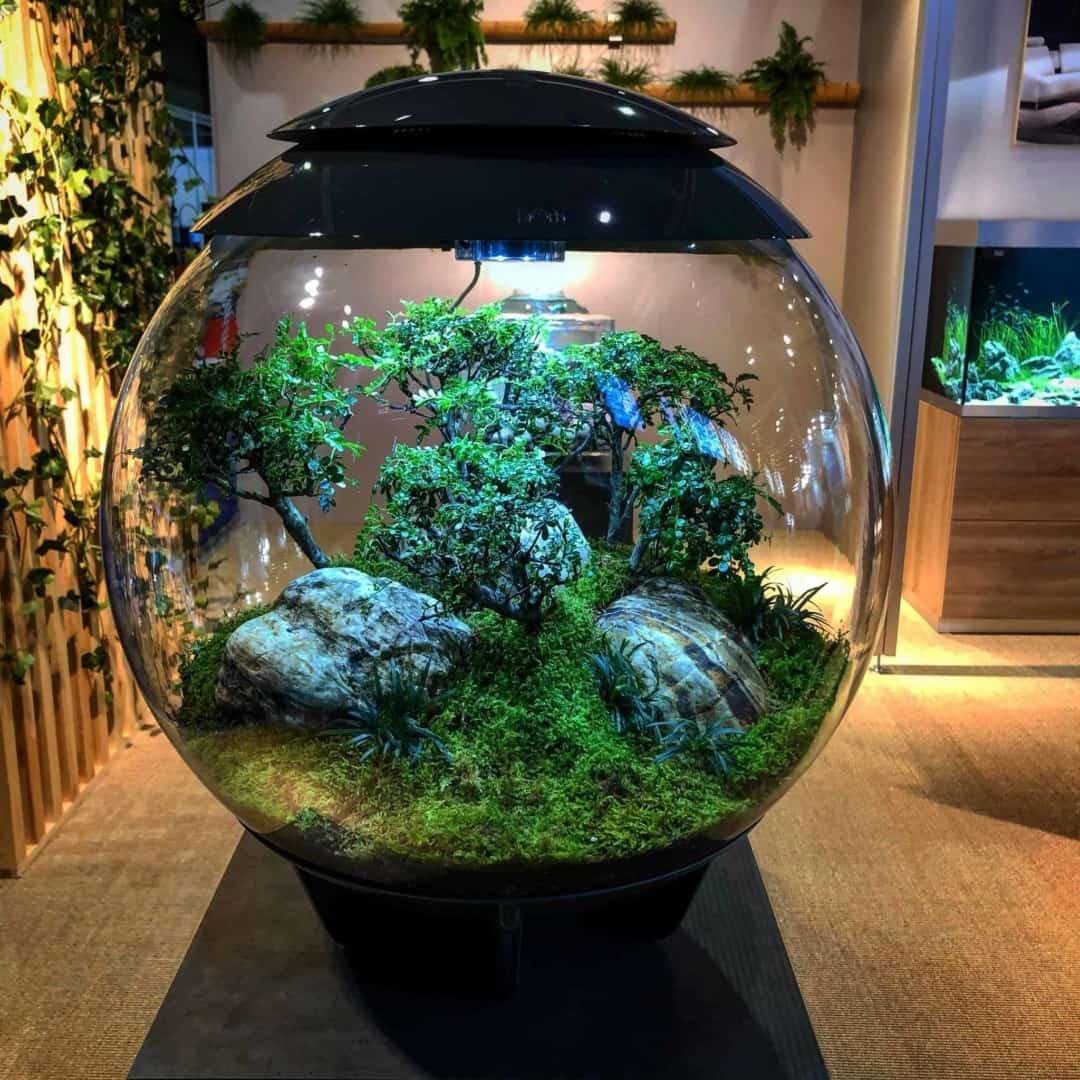 179 BiOrbs - 360° Sicht ins Biotop (Adrie Baumann) 17