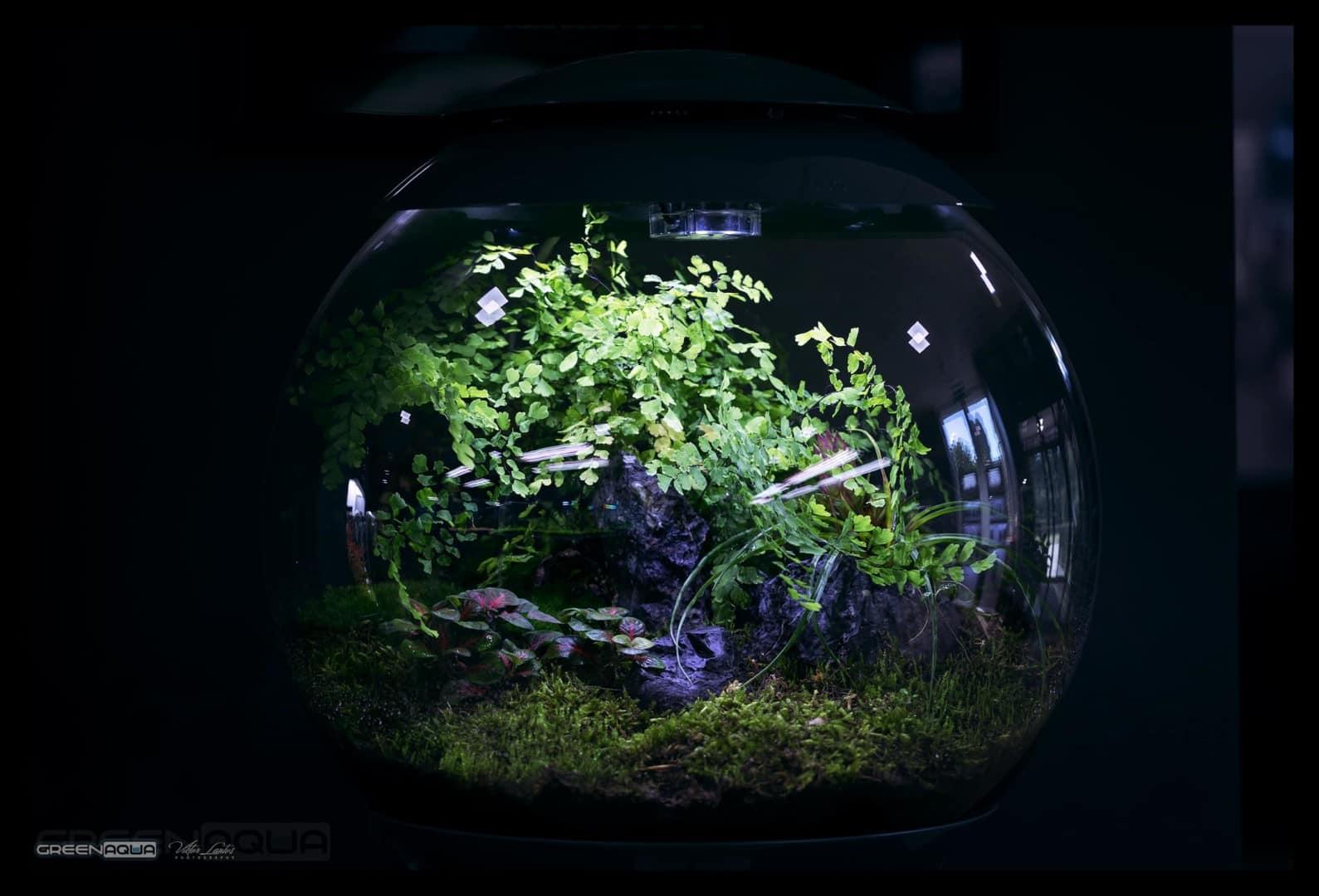 174 Green Aqua 2.0 (Volker Jochum) 8