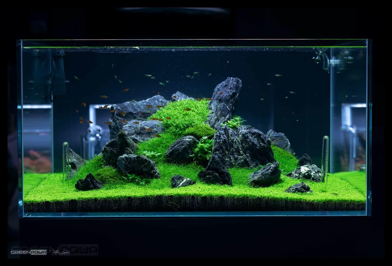 174 Green Aqua 2.0 (Volker Jochum) 22
