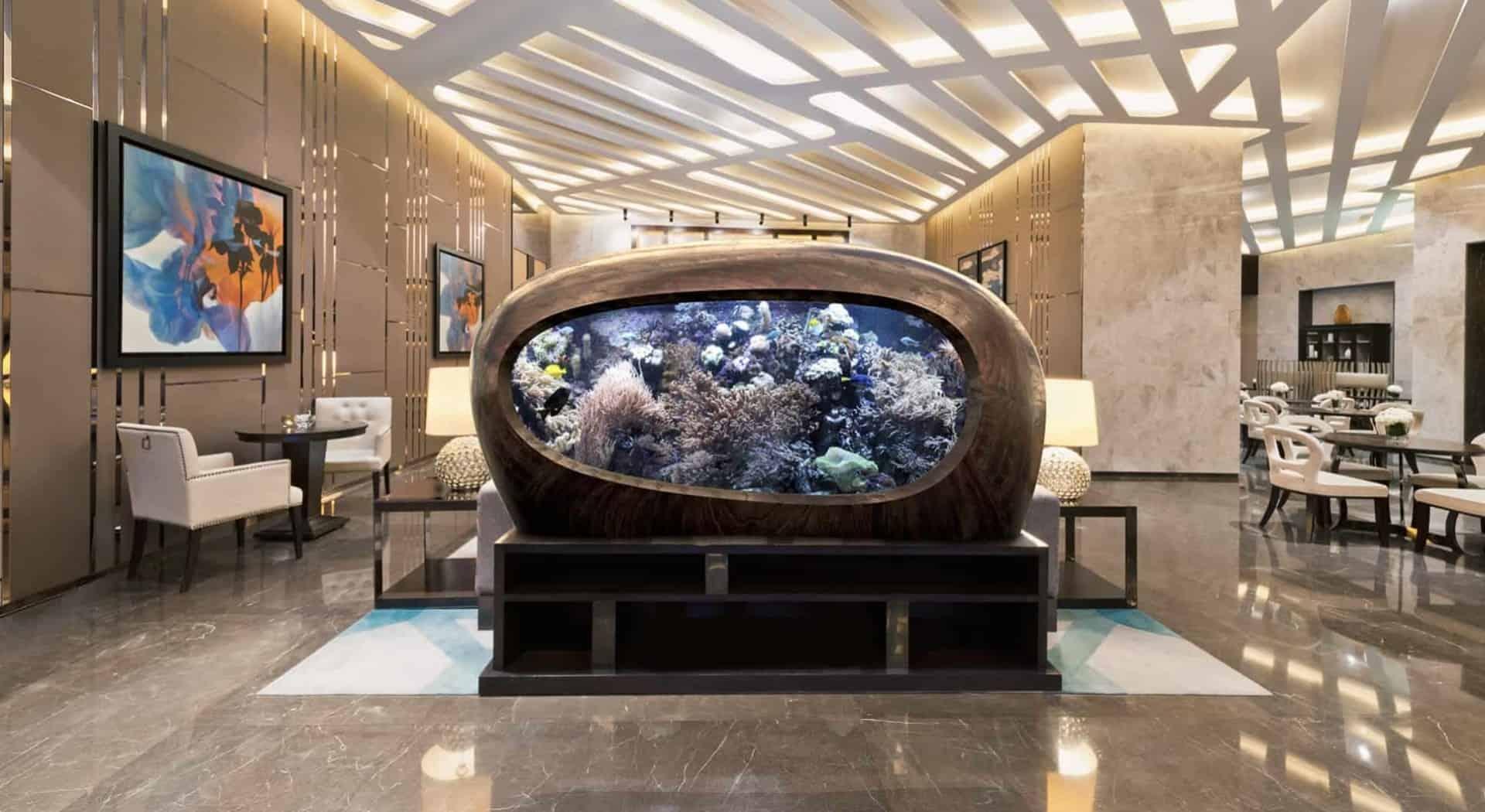 176 Was macht ein Aquarium zu einem Kunstobjekt? (David Nimke) 2