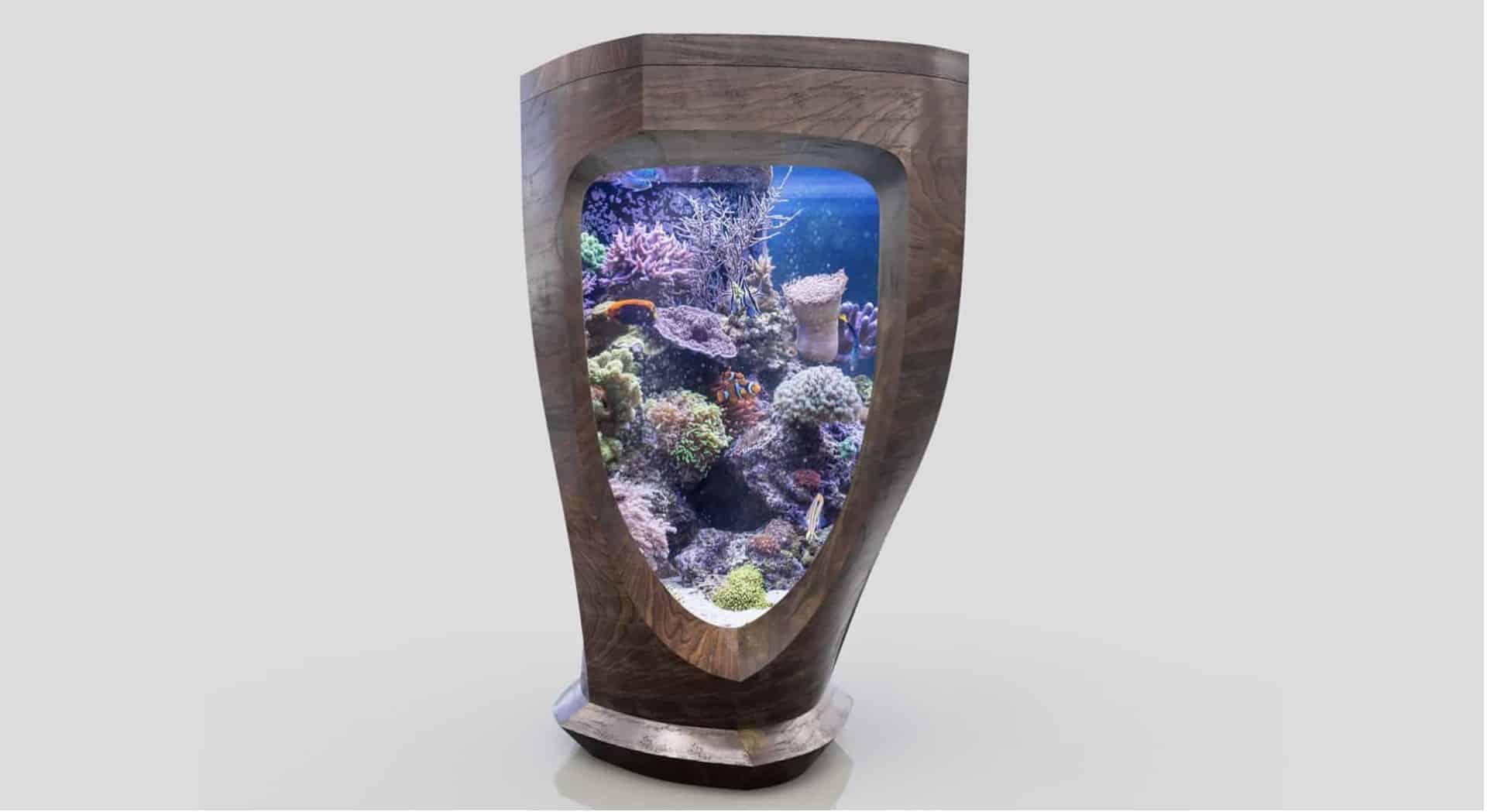 176 Was macht ein Aquarium zu einem Kunstobjekt? (David Nimke) 3