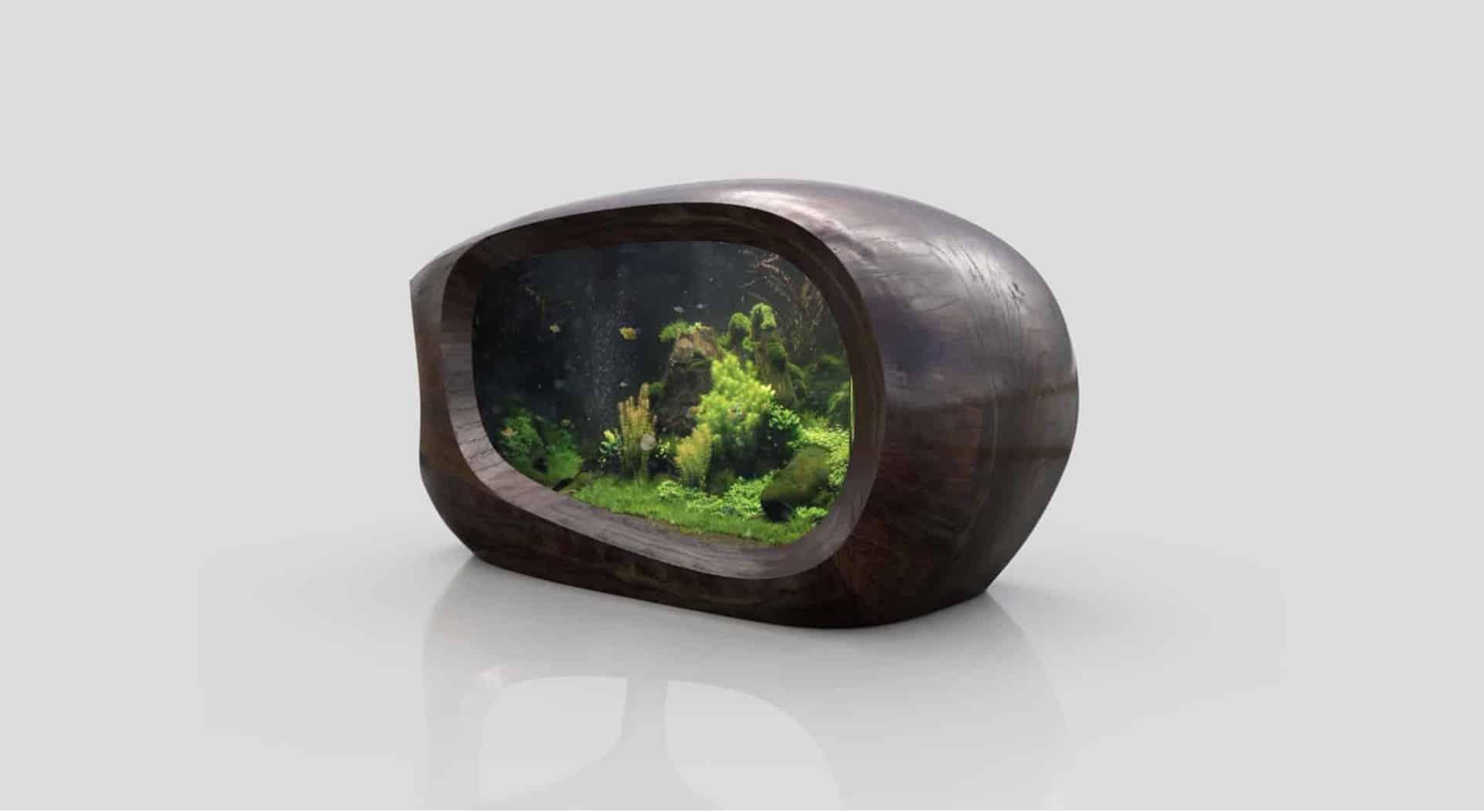 176 Was macht ein Aquarium zu einem Kunstobjekt? (David Nimke) 4
