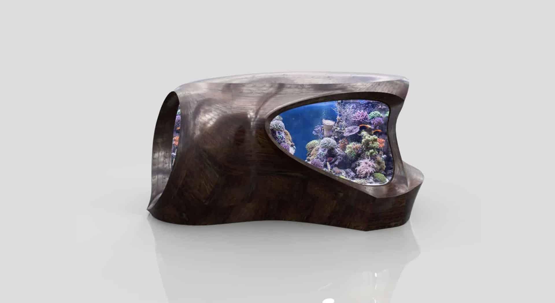176 Was macht ein Aquarium zu einem Kunstobjekt? (David Nimke) 10