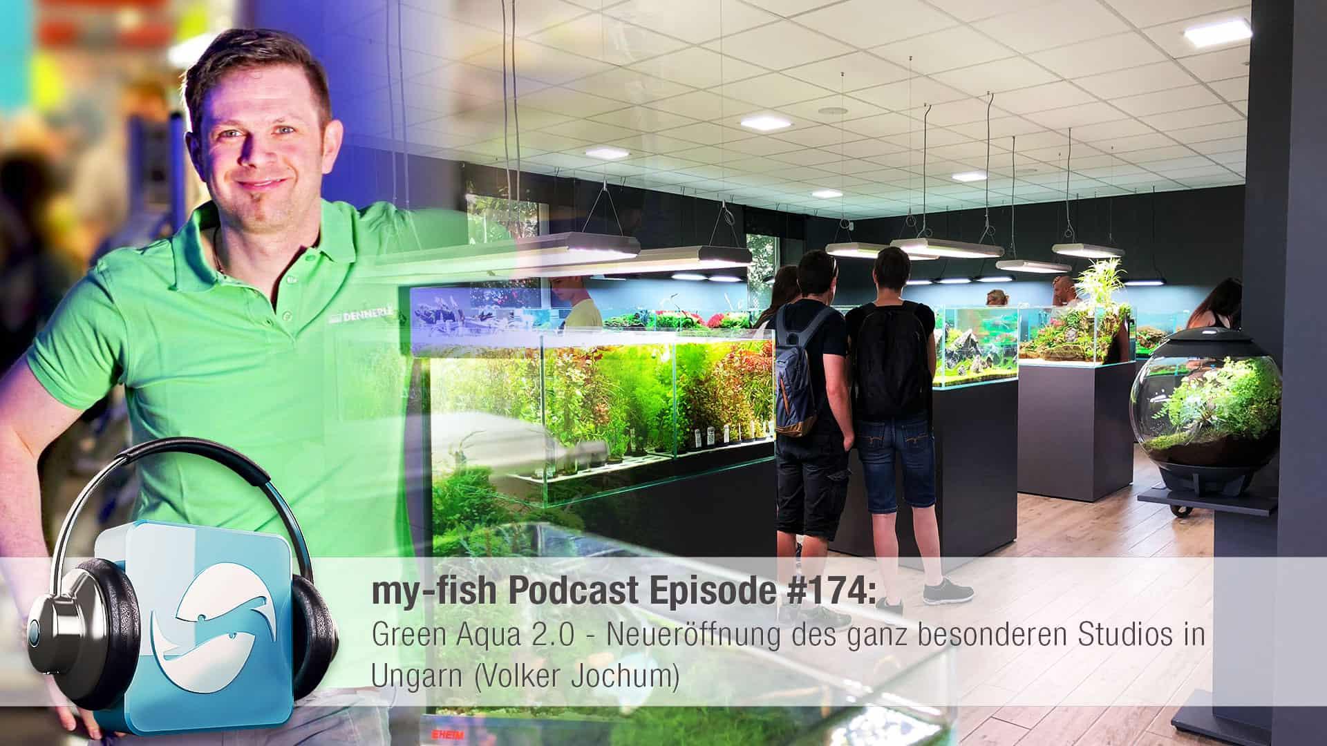 Podcast Episode #174: Green Aqua 2.0 - Neueröffnung des ganz besonderen Studios in Ungarn (Volker Jochum) 1