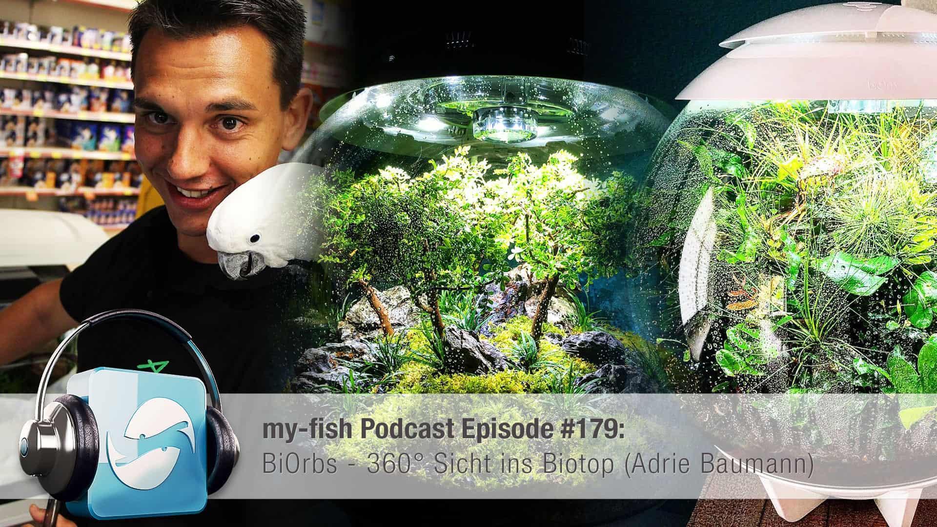 Podcast Episode #179: BiOrbs - 360° Sicht ins Biotop (Adrie Baumann) 1