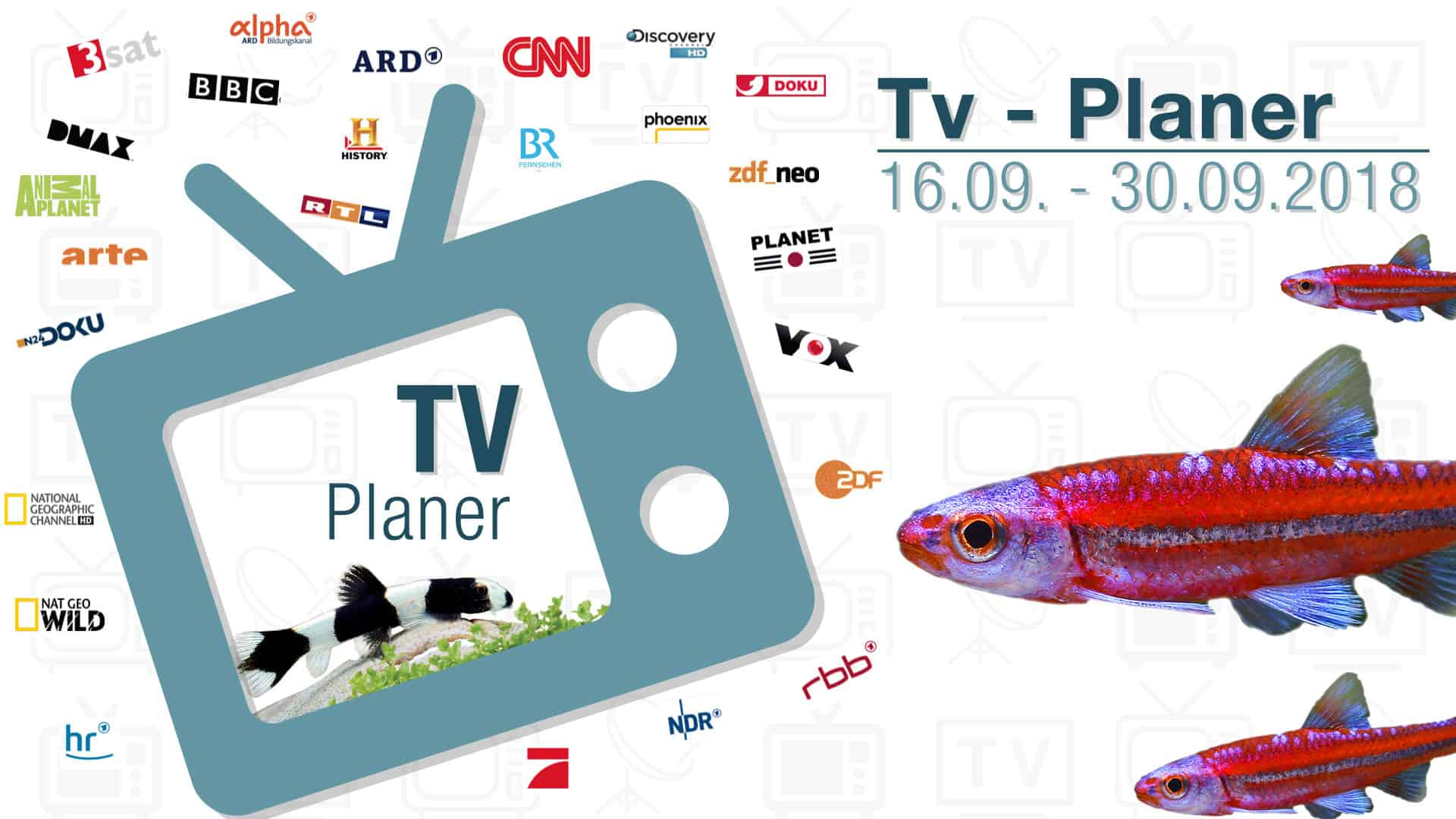 TV-Liste vom 16.09. – 30.09.2018 1