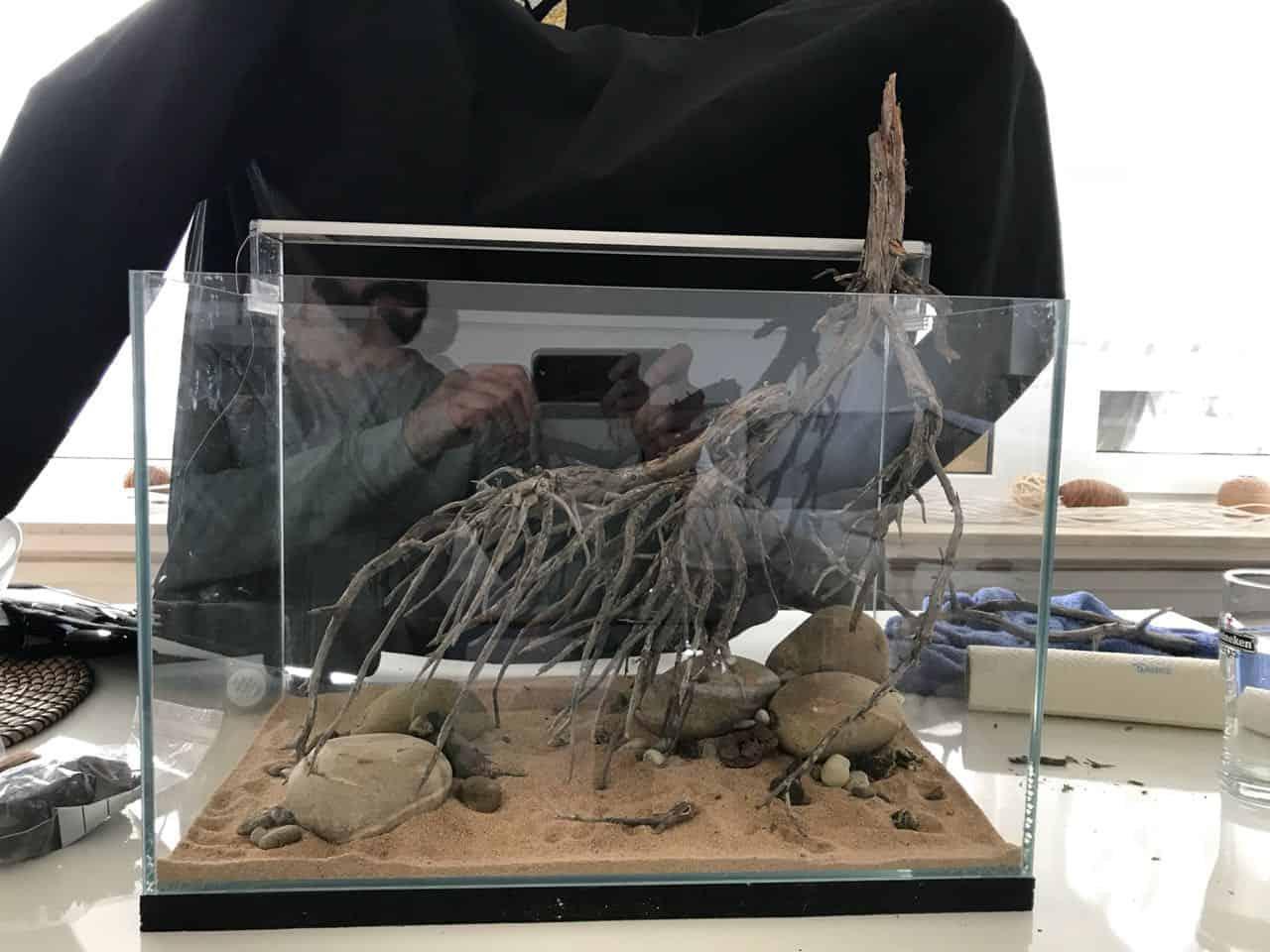 182 Vom Aquascape zum Biotop Aquarium (Dennis Laufer) 2