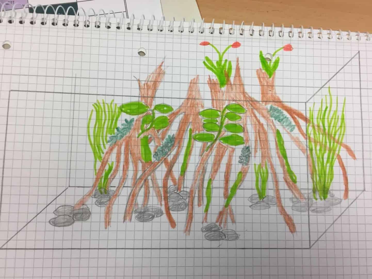 182 Vom Aquascape zum Biotop Aquarium (Dennis Laufer) 17