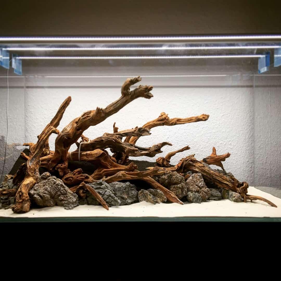 182 Vom Aquascape zum Biotop Aquarium (Dennis Laufer) 13
