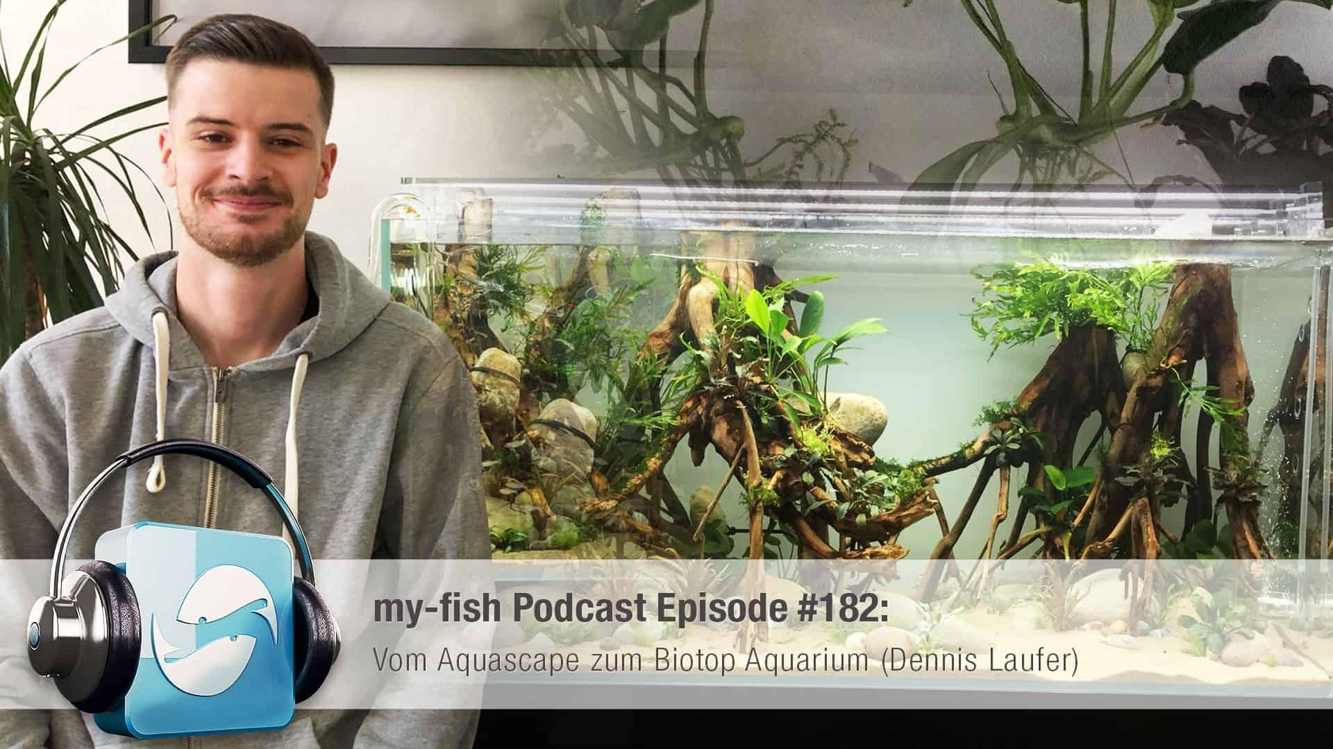 Podcast Episode #182: Vom Aquascape zum Biotop Aquarium (Dennis Laufer) 1