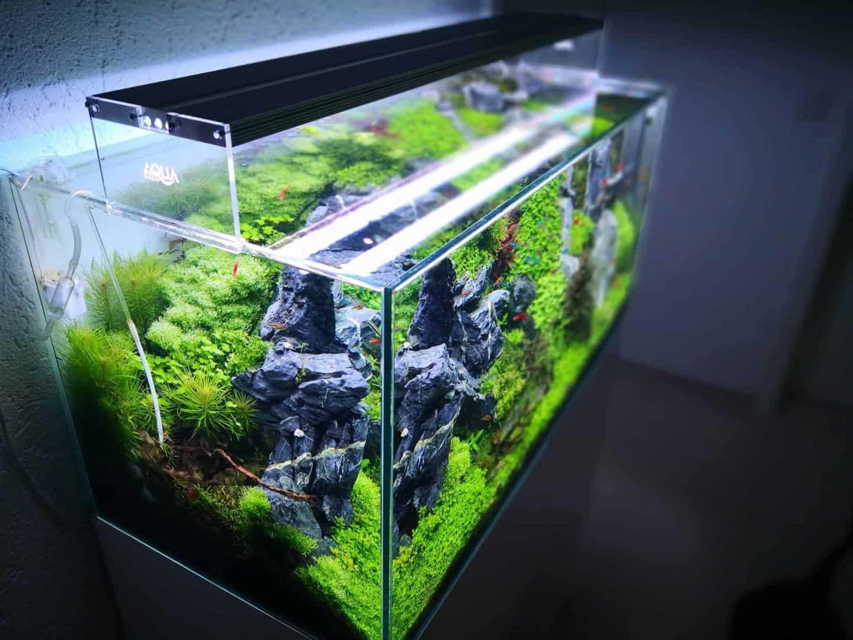 186 LED Aquarienbeleuchtung: Alle Details und Fakten zur Technik Teil 1 (Moritz Stapelfeld) 2