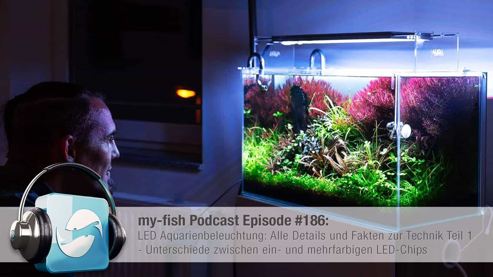 186 LED Aquarienbeleuchtung: Alle Details und Fakten zur Technik Teil 1 (Moritz Stapelfeld) 1