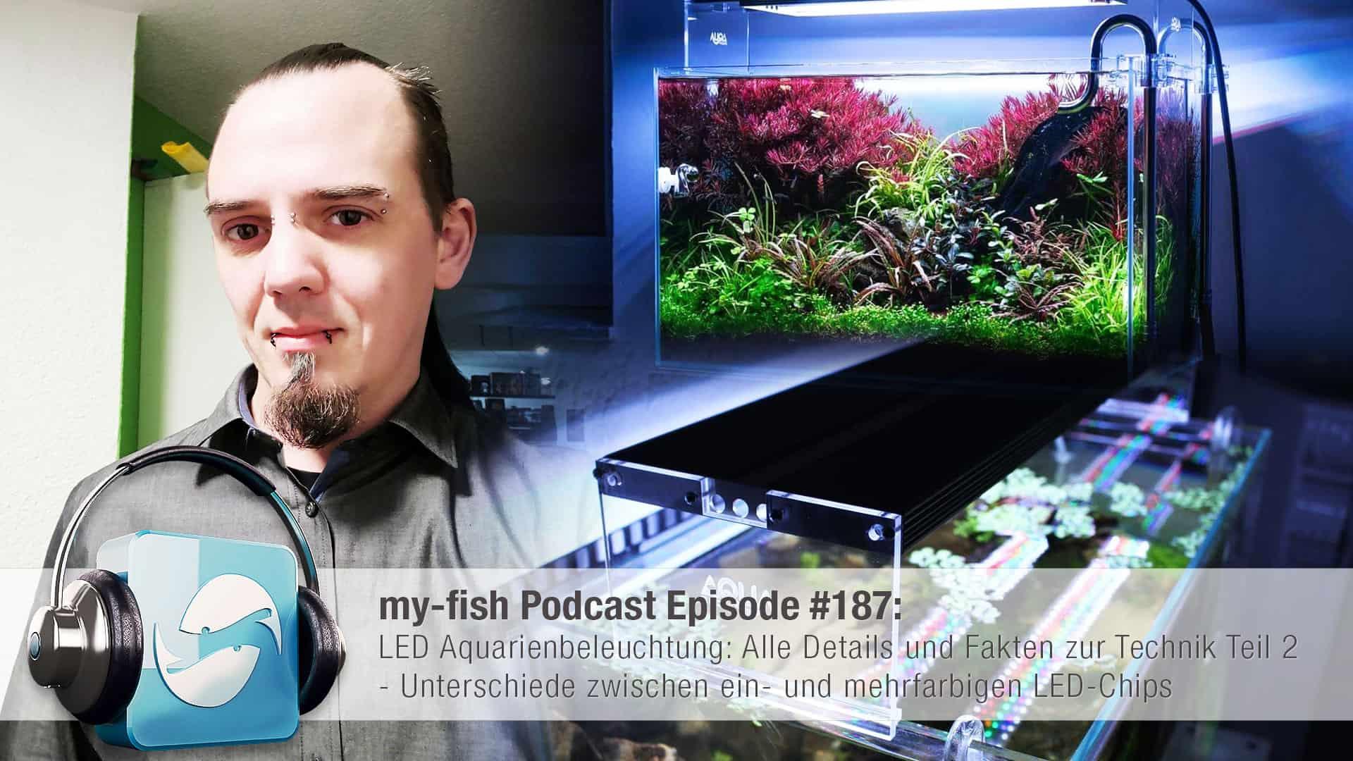 Podcast Episode #187: LED Aquarienbeleuchtung: Alle Details und Fakten zur Technik Teil 2 (Moritz Stapelfeld) 1