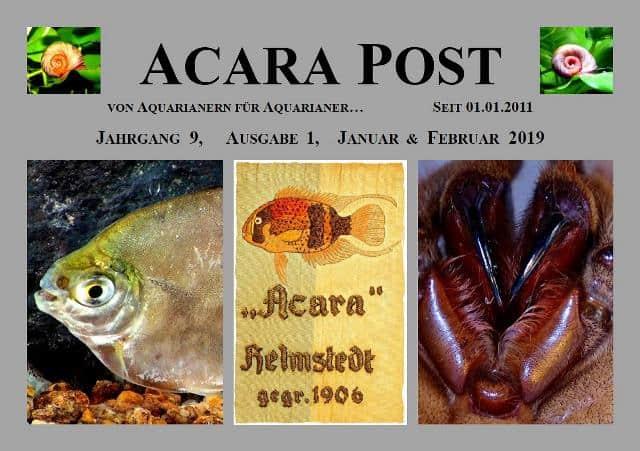 Acara-Post Januar-Februar 2019 - jetzt kostenlos lesen 1