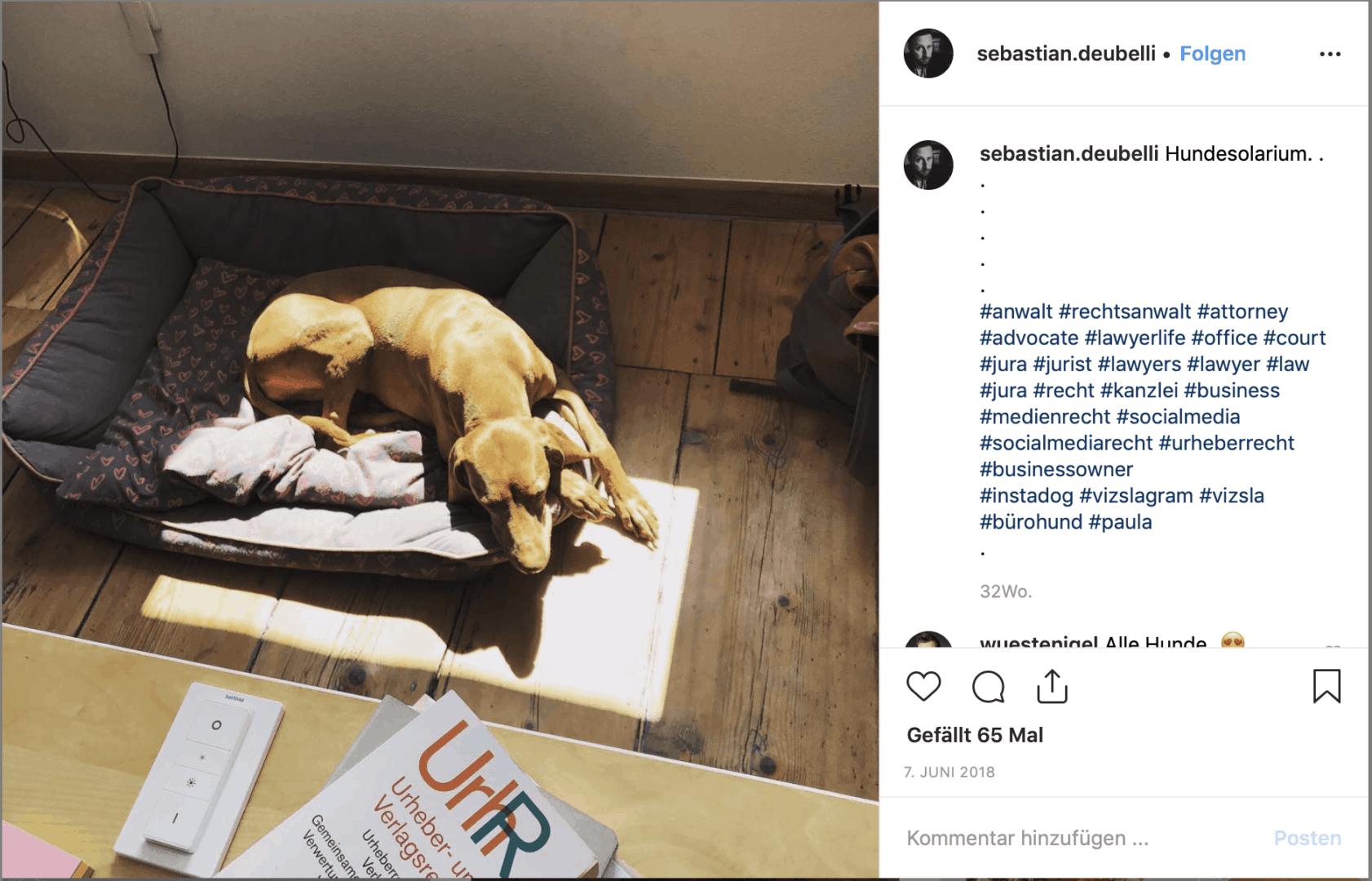 193: #Werbung - Wie du deine Posts vom Aquarium rechtssicher postest (Sebastian Deubelli) 5