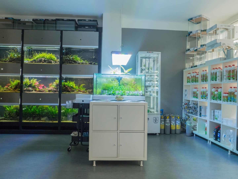 197 Liquid Nature - zwei Hobby Aquascaper eröffnen ein Fachgeschäft mit Aquariengalerie (Stefan Graf & Philip Schwarz) 2