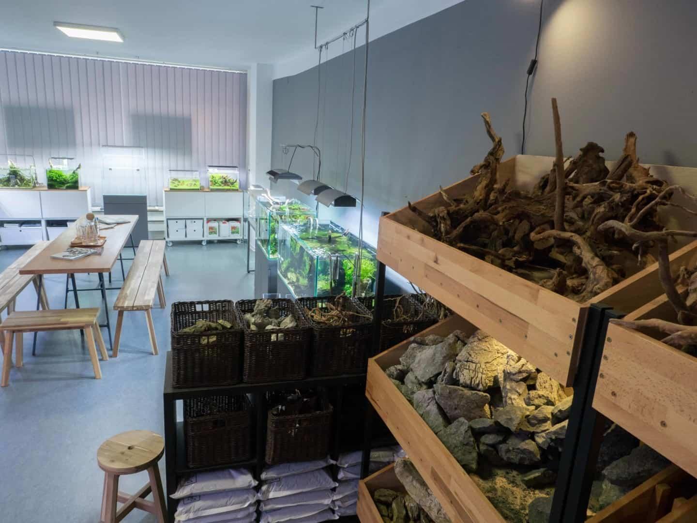 197 Liquid Nature - zwei Hobby Aquascaper eröffnen ein Fachgeschäft mit Aquariengalerie (Stefan Graf & Philip Schwarz) 7