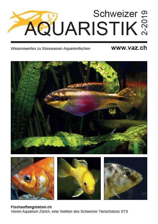 Vorschau: Themenheft Schweizer Aquaristik 2/2019 1