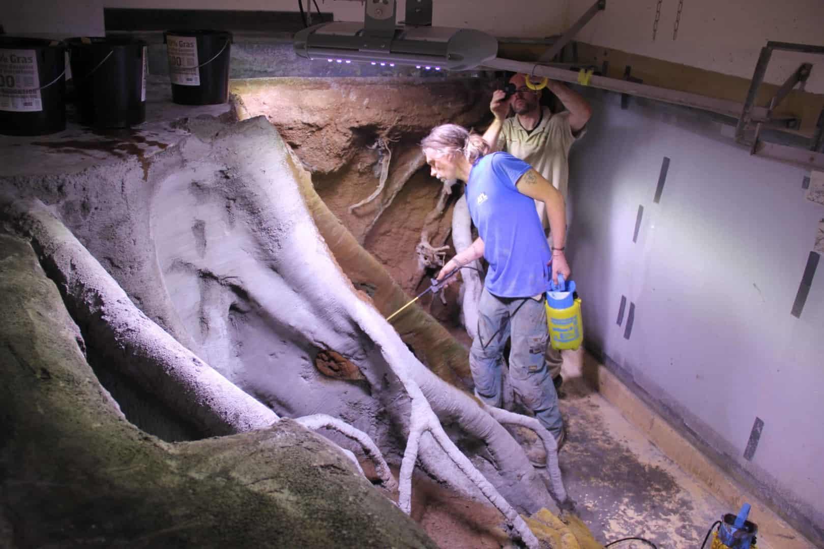 205 - Das 28.000 Liter Sumatra Flusslauf Aquarium im Tierpark Hagenbeck - Die Planung und Vorbereitung + Fakten (Stefan Hummel) 9
