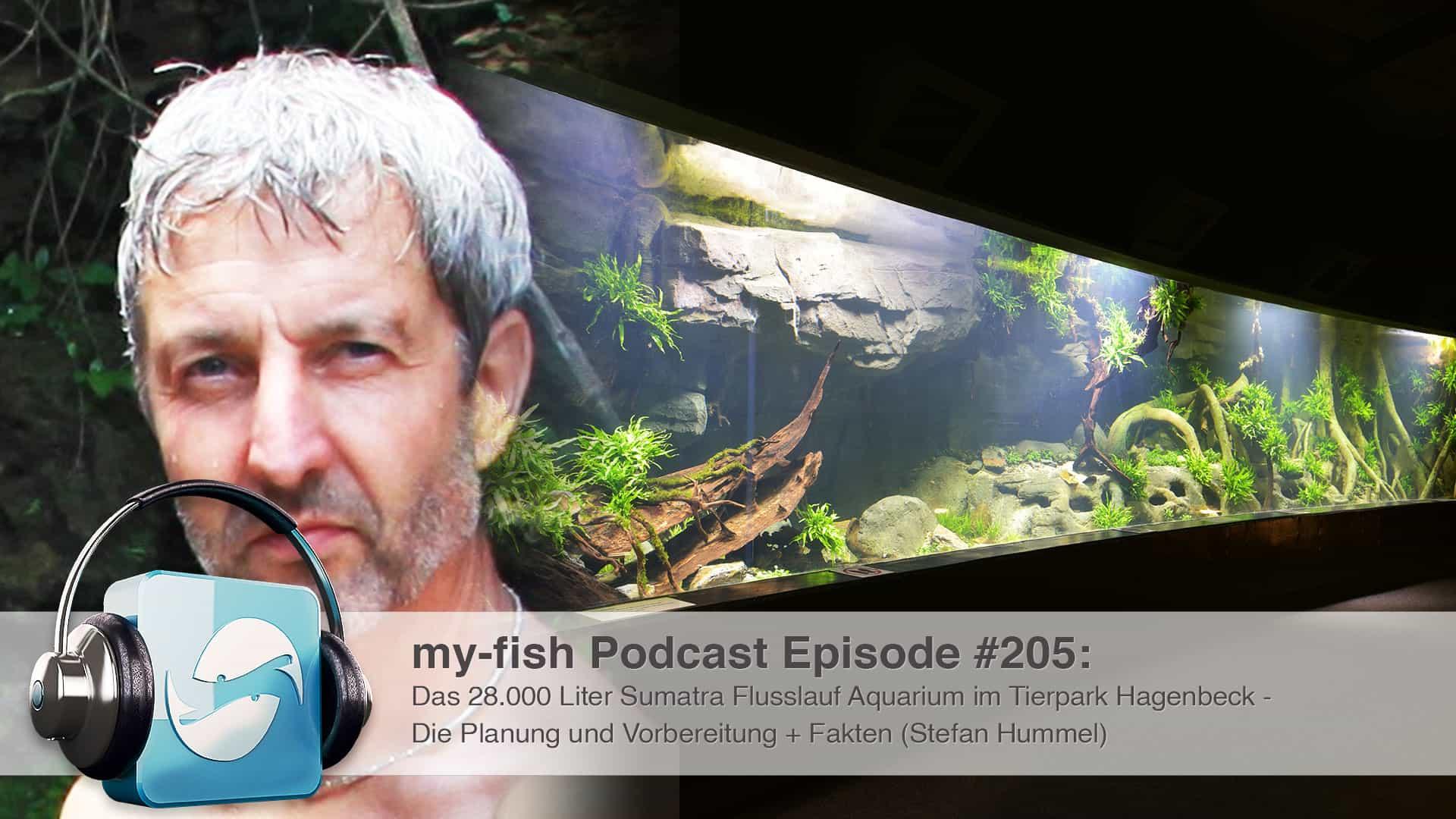 205 - Das 28.000 Liter Sumatra Flusslauf Aquarium im Tierpark Hagenbeck - Die Planung und Vorbereitung + Fakten (Stefan Hummel) 1