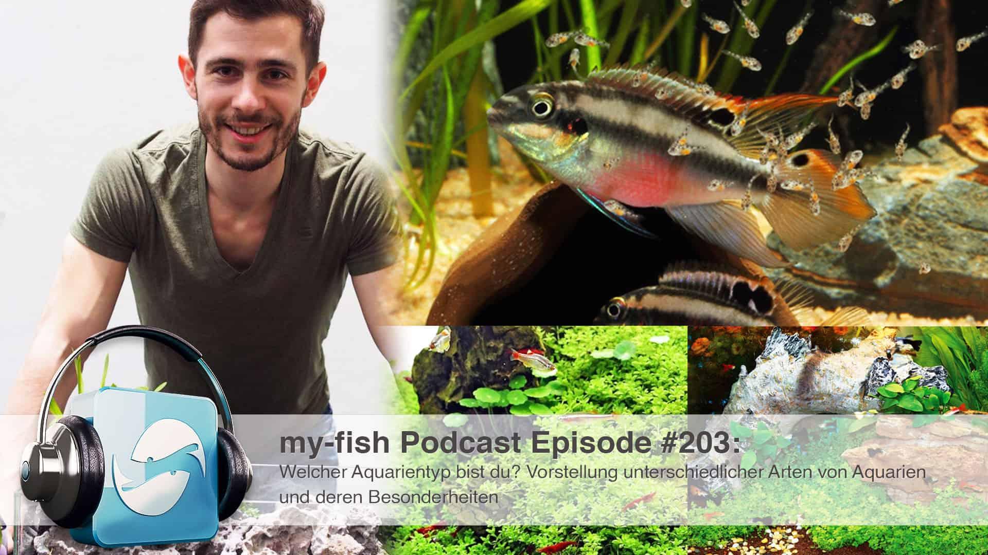 Podcast Episode #203: Welcher Aquarientyp bist du? Vorstellung unterschiedlicher Arten von Aquarien und deren Besonderheiten 1
