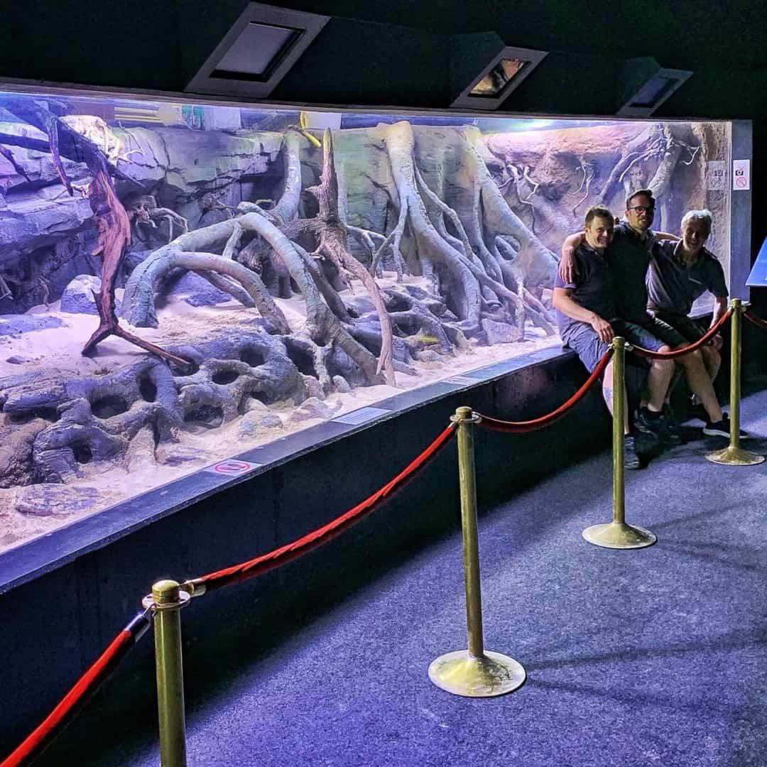 206 - Das 28.000 Liter Sumatra Flusslauf Aquarium im Tierpark Hagenbeck - Die Umsetzung und Einrichtung (Volker Jochum) 3